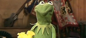 Kermit is not amused by you, Juan Pablo.